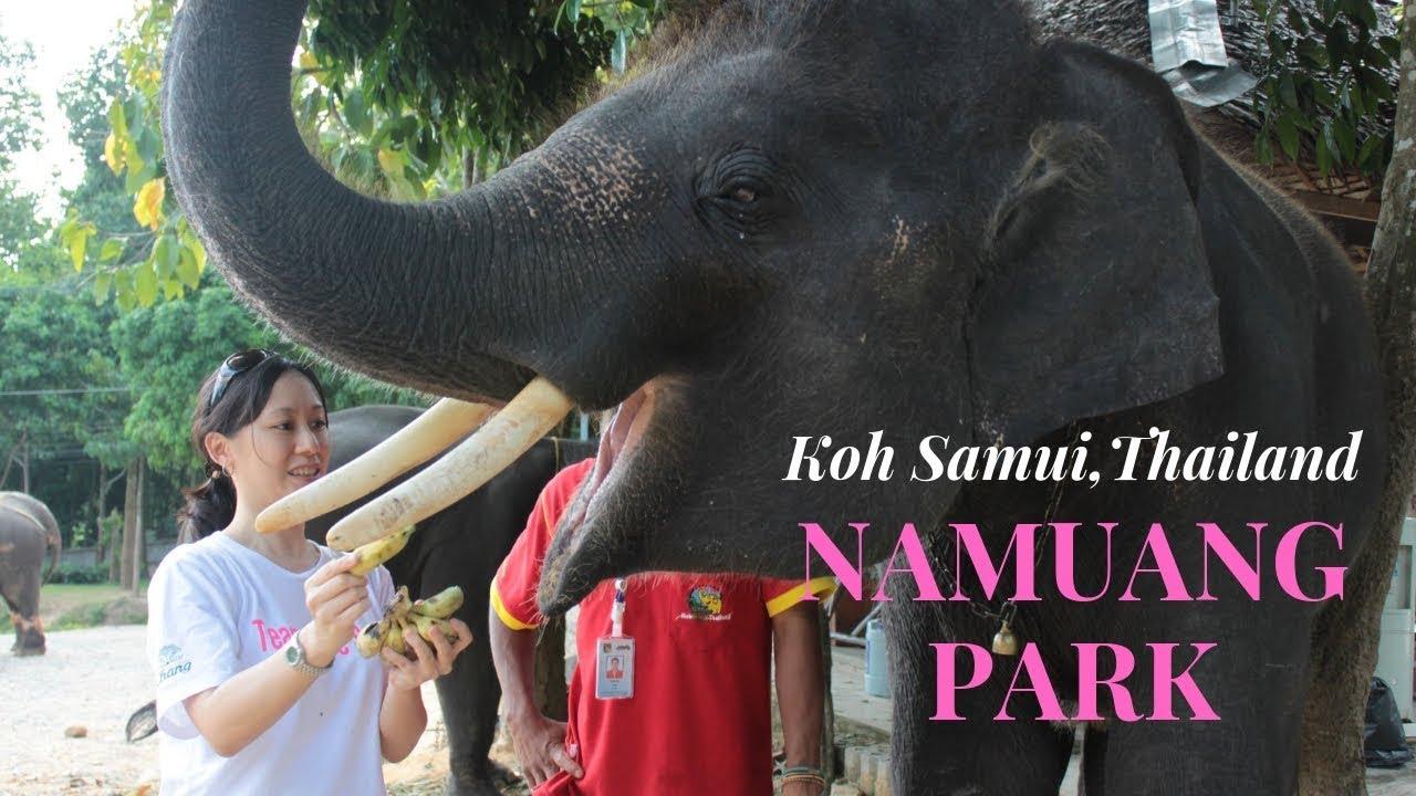 Travel: Koh Samui Thailand's Namuang Park