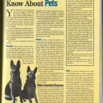 What You Should Know About Pets & The Diseases They Bring